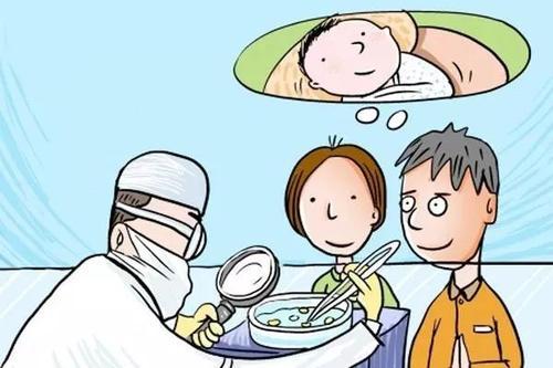 试管婴儿移植后的养胎建议及禁忌事项